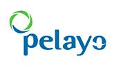 Logo aseguradora Pelayo